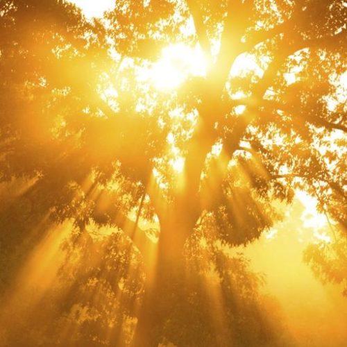 Spiritual Journeys sets